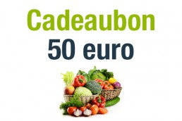 VVHVcadeaubon50